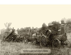 oregon threshing