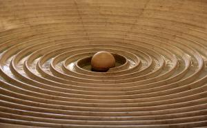 concentric-circles-naomi-wittlin